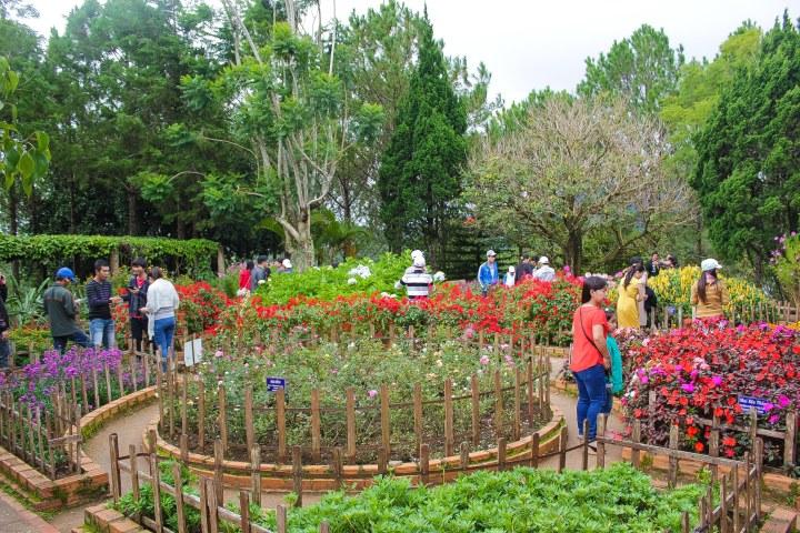 Flower garden in Thien Vien Truc Lam temple