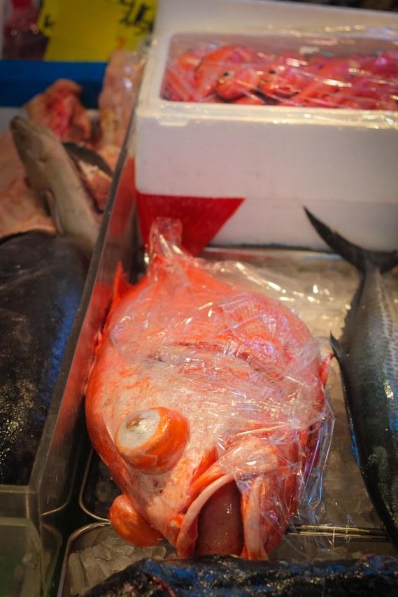 big fish tokyo